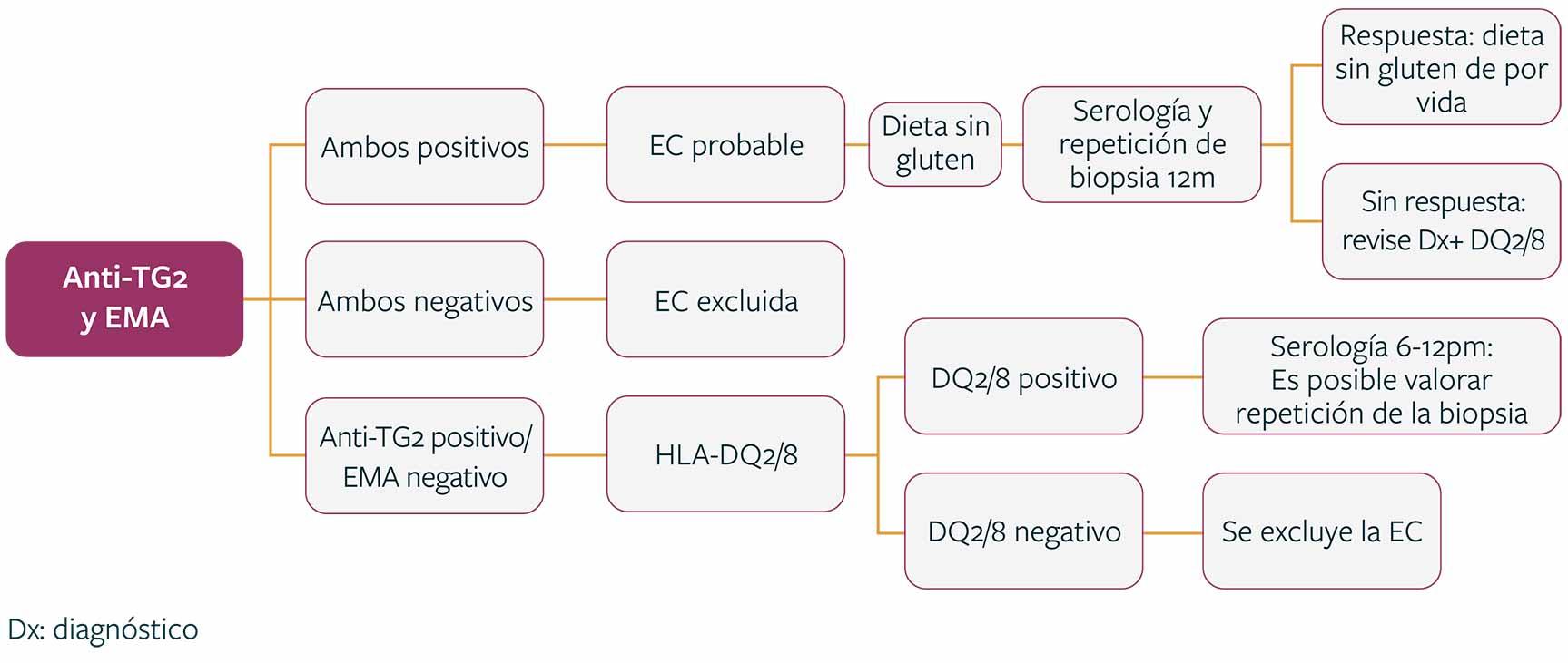 figure Enfoque de diagnóstico sugerido para pacientes con serología positiva e histología Marsh I. Adaptado de Al-Toma A, et al. 2019