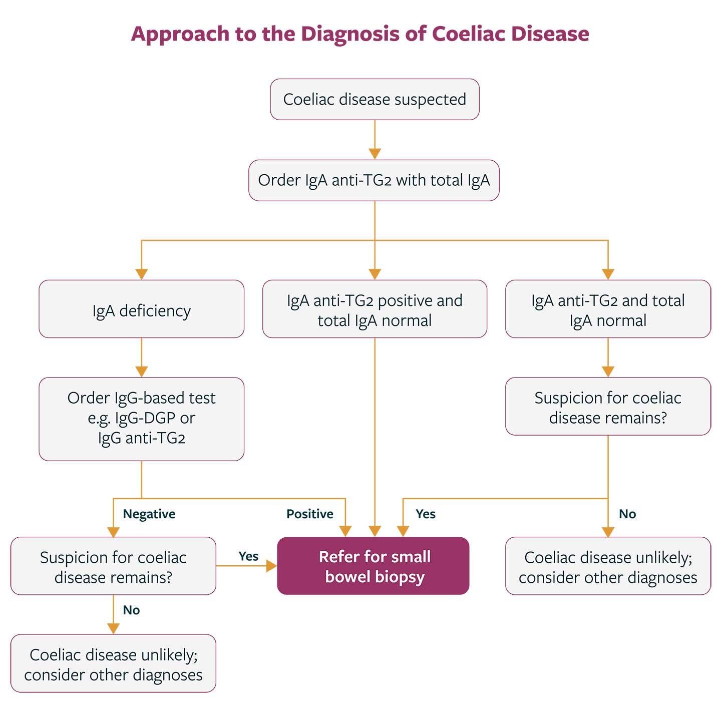 Serological Diagnostic Algorithm for Coeliac Disease. Adapted from Pelkowski & Vieara 2014