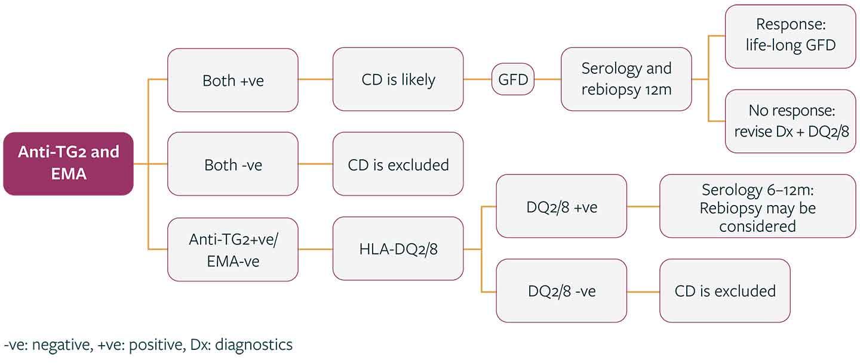 Diagrams Positive serology