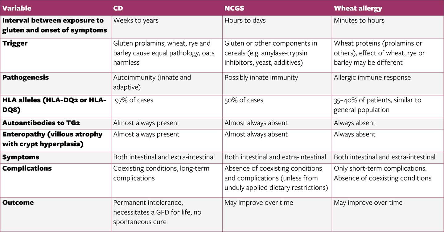table - Clinical and pathogenic differences among CD, wheat allergy and NCGS